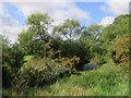 TL4452 : The Cam at Hauxton Meadows by John Sutton
