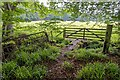 NH8048 : Field Gateway Holme Rose by valenta