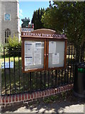 TG1022 : Reepham Town Notice Board by Geographer