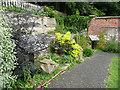 NZ6620 : Path climbing gently up through the garden, Saltburn by Humphrey Bolton