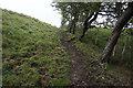 SE8554 : Chalkland Way towards Nettle Dale by Ian S