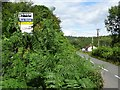 SO6608 : Overgrown bus stop by Philip Halling