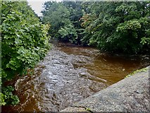 J3731 : The Shimna below the New Bridge during Storm Francis by Eric Jones