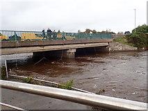 J3731 : Fast flowing water below Shimna Road Bridge by Eric Jones