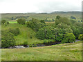 NY7803 : River Eden below Birkett Common by Stephen Craven