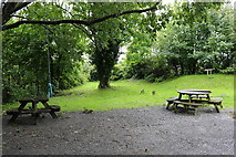 NX4355 : Picnic Area, Wigtown by Billy McCrorie