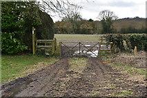 SU7431 : Footpath at Empshott Green by N Chadwick