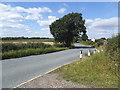 SE3816 : Passing place on Wintersett Lane by Stephen Craven