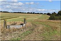 SU0723 : Water trough in bare field by David Martin