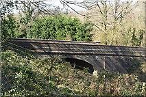 TQ5538 : High Rocks Lane Bridge, over Spa Valley Railway by N Chadwick