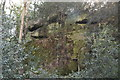 TQ5638 : High Rocks by N Chadwick