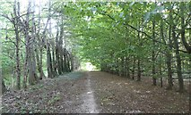 TR1859 : Footpath south of Fordwich leading to the Srour Valley Walk by pam fray