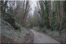 SY6778 : Rodwell Trail by N Chadwick