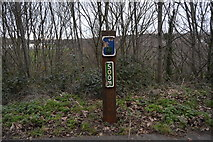 SY6778 : Distance marker, Rodwell Trail by N Chadwick
