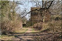 TQ5738 : Tunbridge Wells Circular Walk link path approaching Ramslye by N Chadwick