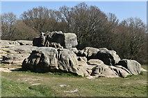 TQ5739 : Wellington Rocks by N Chadwick
