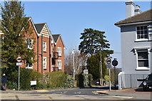 TQ5840 : Woodbury Park Rd by N Chadwick
