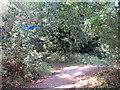 TQ4286 : Path near Ilford by Malc McDonald