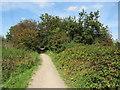 TQ4286 : Roding Valley Way near Ilford by Malc McDonald