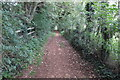 SP4935 : Tree lined footpath to Mill Lane by Philip Jeffrey