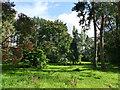 SJ7967 : The Quinta Lovell Arboretum, Swettenham by Stephen Craven