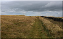 SE1443 : Path on Hawksworth Moor by Chris Heaton