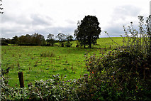 H5672 : Mullaslin Townland by Kenneth  Allen