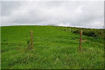 H5672 : A low hill, Mullaslin by Kenneth  Allen