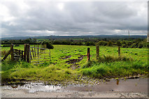 H5672 : Wet along Shinnagh Road by Kenneth  Allen