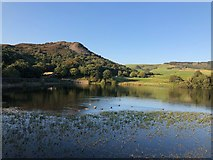 SJ9471 : View over Bottoms Reservoir towards Tegg's Nose by Philip Cornwall
