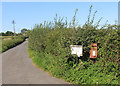 SU2098 : Post Box in the Brambles by Des Blenkinsopp