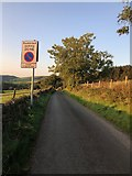 SJ9570 : Looking North down lane on Southeast edge of Macclesfield Forest by Philip Cornwall