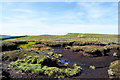 NY8610 : Peat bog and peat banks by Trevor Littlewood