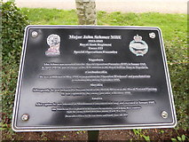 SK1814 : VJ Day at the National Memorial Arboretum (979) by Basher Eyre