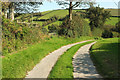 SX8749 : Footpath from Higher Week by Derek Harper