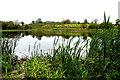 H4369 : Fireagh Lough by Kenneth  Allen