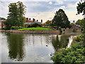 SJ7387 : The Moat, Dunham Massey by David Dixon