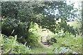 ST2189 : Gate on lower flank of Mynydd Machen by M J Roscoe