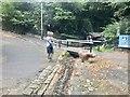 SZ5880 : A Dog Jumps Shanklin Chine Ford by John Walton