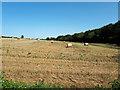 ST8885 : Round straw bales in field near Norton by Vieve Forward