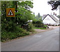 SO3614 : Warning sign alongside the B4233, Llanvapley, Monmouthshire by Jaggery