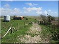 SY6386 : South Dorset Ridgeway near Dorchester by Malc McDonald