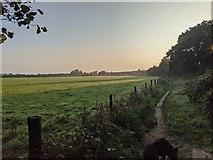 TF0820 : Morning light by Bob Harvey