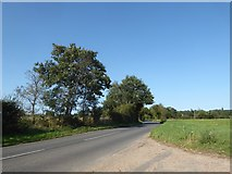 TL9834 : Constable, that's a Gainsborough: looking north-east along the B1087 by Basher Eyre