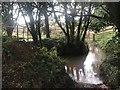 SZ5083 : Rookley Farm Ford by John Walton