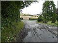 TR2044 : Reece Lane by John Baker