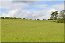 TQ5843 : Pasture, Frith Valley by N Chadwick