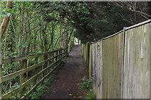 TQ5944 : Footpath by A21 by N Chadwick