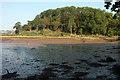 SX8972 : Wood at Netherton Point by Derek Harper