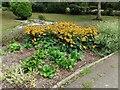 TQ2588 : Flower bed in Northway Gardens by David Howard